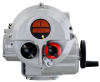 Electric, Full Output Turn Actuator, IQTF Pro Range