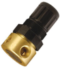 Pressure Regulators for Inert Gases -- R44