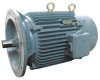 Specialty Motor -- JQLX Three-Phase Induction Motor