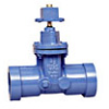 Iron Gate Valve -- Series 403RT-RW