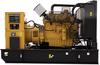 ACERT™ Diesel Generator Set -- C9