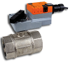 Two Way Characterized Control Valve -- B2 Series