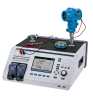 Pressure Calibrator, 300 PSI NPT, PM200-G2M, 2 MPA -- 2271A-N-G2M