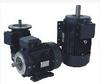Three Phase-Aluminum-NEMA EPAct-TEFC -- BL3-AL-TF-143T-2-B-D-1.5 - Image