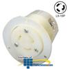 Hubbell Twist-Lock Flanged Receptacle, NEMA L5-15R -- HBL4715C