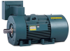 Premium Efficient, Severe Duty AC Motors -- L3576M