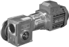 Compact Worm Geared Motors -- Worm Gear Series BS - Image