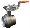 Vic-300 MasterSeal™ Stainless Steel Butterfly Valve -- Series 461/Series E461