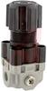 Regulator; 1/8NPT ports; .05-.3MPa pressure range -- 70070553