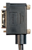 DVI-D Dual Link DVI Cable Male / Male Right Angle, Right 1.0 ft -- DVIDD-RA4-1 - Image
