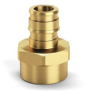 Expansion XL Brass Female Threaded Adapters -- QEUFC33GX -Image