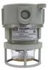 Explosionproof Strobe/Flashing Light Fixture -- NVSLCFG25RXG