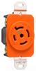 Locking Device Receptacle -- IGL2320-R - Image