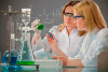 Chemsultants International Network, Inc. - Image