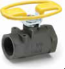 Carbon Steel Ball Valves Series 502CS -- Oval Handle, Female Pipe Ends, Panel Mount XV502CS-X-21