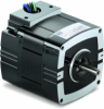 Metric 30R Series AC Motor -- Model N1319 - Image