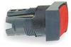 Illuminated Pushbutton -- 4VW51