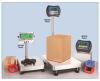 Series 5 Bench Scales -- H34700 -Image