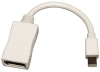 Mini DisplayPort to DisplayPort Cable Adapter, Video Converter, 2560x1600 (M/F) -- P139-06N-DP