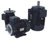 Three Phase-Cast Iron-NEMA EPAct-TEFC -- BL3-CI-TF-143T-2-B-D-1.5 - Image
