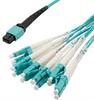 MPO w/o pins to LC fan-out, 2.0mm diameter, 12 fiber, OM3 50/125um Multimode, OFNR Jacket, Aqua, 10 meter -- MPF12OM3-20LCR-10 -Image