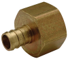 XL Brass Female (Non-Swivel) Pipe Thread Adapter -- QQUFC55GX -Image