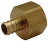 XL Brass Female (Non-Swivel) Pipe Thread Adapter -- QQUFC34GX -Image