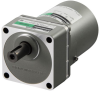 Three-Phase Gear Motor with Brake -- 5IK60VESM-250A