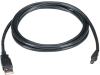 USB 2.0 Cable Type A Male to Type Mini-B Male Black 6-ft. -- USB06-0006 -- View Larger Image