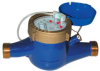Hot Water Meters for Totalization and Rate Indication -- FTB8000HW