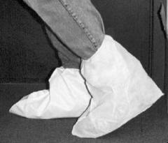 Footwear and Footwear Covers