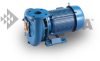 Series 300 - Single Stage End Suction Horizontal Close Pump -- Model 361A - Image