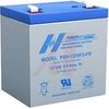 Battery,Sealed Lead Acid,12v,5.5ah,HighDischarge Rate, Flame Retardant Case -- 70115570