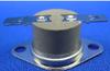 Automatic Reset Viro Glass Thermostat (General Purpose) -- Type 21EN