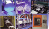 Vinylex Corporation