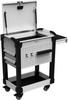 MultiTek Cart 2 Drawer(s) -- RV-GB37S2X002B -Image