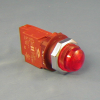 30 mm Pilot Lights -- N7LN-D - Image