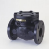 F491 Swing Check Valve -- View Larger Image