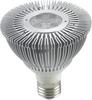Firefly LED Bulb -- PAR -30 (5LED)