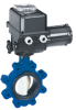 Centered Disc Butterfly Valve -- ISORIA 20