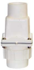 Dual-check Valve,2 In,Socket,PVC -- 5CZH2