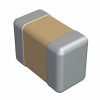 Ceramic Capacitors -- 1761-1074-1-ND - Image
