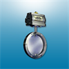 Series 894 Sanitary Butterfly Valves -- View Larger Image