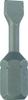 1250353 -Image