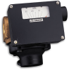Rugged Economical Flowmeter -- FL-W Series - Image