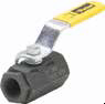 Carbon Steel Ball Valves Series 500CS -- Female-Female Pipe Ends XV500CS - Image
