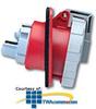 Leviton 480 AC 2P3W Wiring Watertight Pin and Sleeve.. -- 320R7W