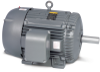 200 & 575 Volt AC Motors -- BM3543