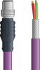 LAPP UNITRONIC® PROFIBUS® Single-Ended Cordset - 5 positions male M12 straight to Wire Leads - Violet PVC - Stationary - 5m -- OLFPB4110100S05 -Image