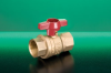 D171AT T-Handle DZR Ball Valve -- View Larger Image